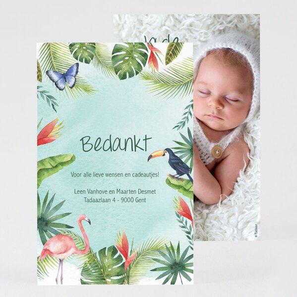 tropisch-geboorte-bedankkaartje-TA0517-2000002-15-1