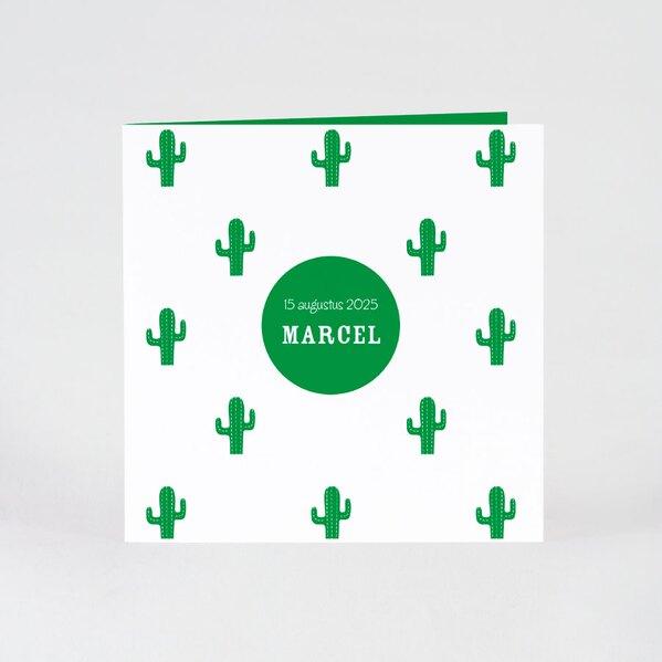 hip-geboortekaartje-met-cactussen-TA05500-2000003-15-1