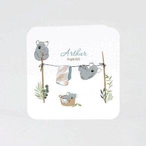 schattig-getekend-geboortekaartje-met-koala-beertjes-TA05500-2000078-15-1