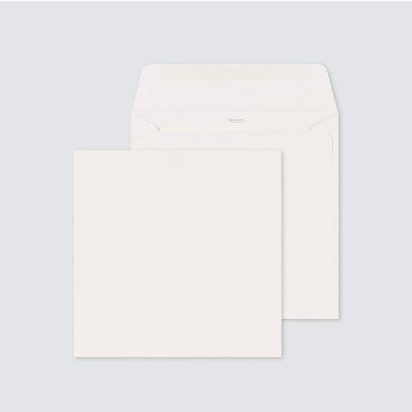 vierkante-glinsterende-envelop-met-rechte-klep-17-x-17-cm-TA09-09606501-15-1