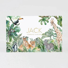 jungle-uitnodiging-met-goudfolie-TA1227-2100006-15-1