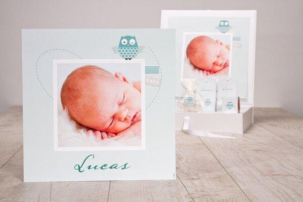 mintgroene-geboorteposter-met-eigen-foto-en-uiltje-TA1573-1800019-15-1