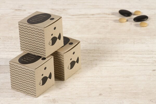 schattig-doosje-met-vis-zwart-TA1575-1400046-15-1