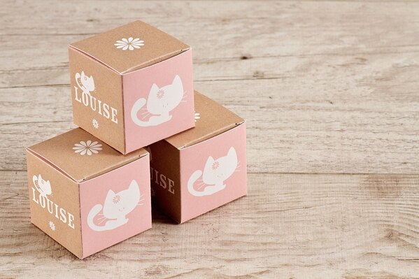 roze-kubusdoosje-met-katje-TA1575-1600059-15-1
