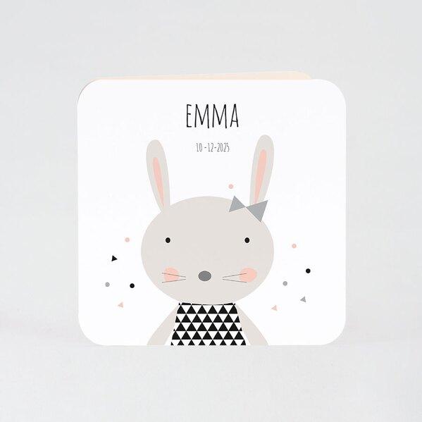 geboortekaart-lief-klein-konijntje-buromac-507034-TA507-034-15-1