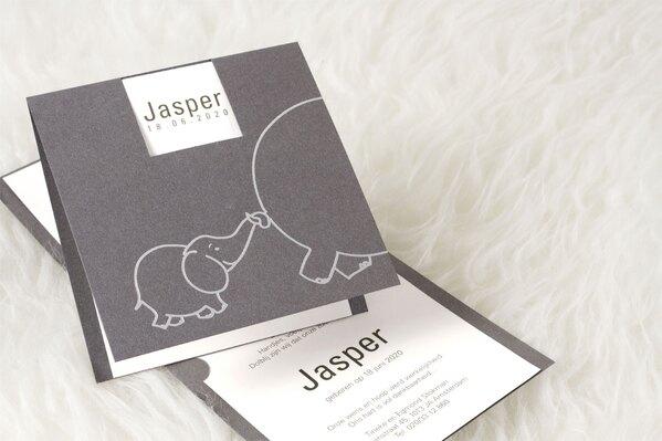 trendy-zilvergrijs-kaartje-met-olifantje-buromac-580019-TA580-019-15-1