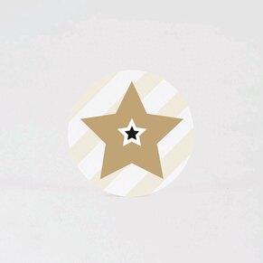 sluitzegel-gouden-ster-TA876-105-15-1